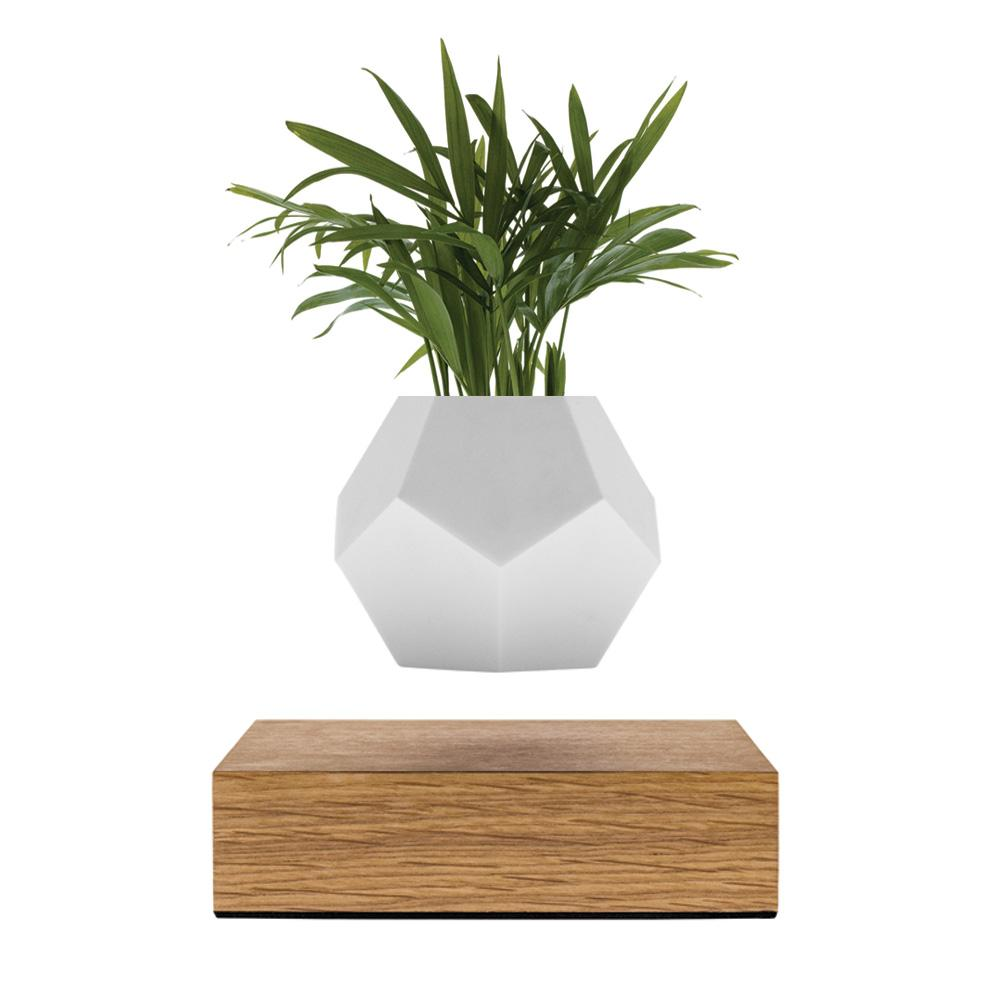 Lyfe planter flyte floating vase design technology l'erudite concept store plant home decoration
