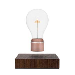 Flyte buckminster lamp LED floating bulb